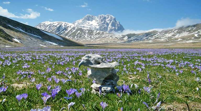 Montagne d'Abruzzo –  Parco Nazionale del Gran Sasso e Monti della Laga