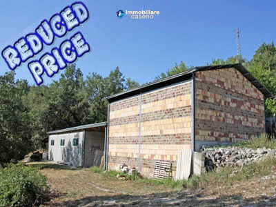22201-Carpineto-Sinello-reduced-price