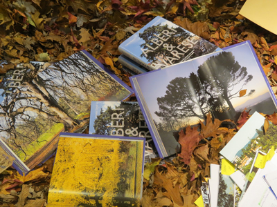 Trees-and-monumental-books