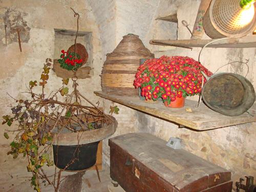Cellar-Treglio