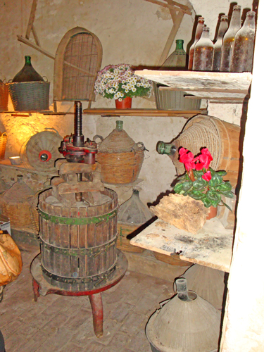 Wine-cellar-Abruzzo