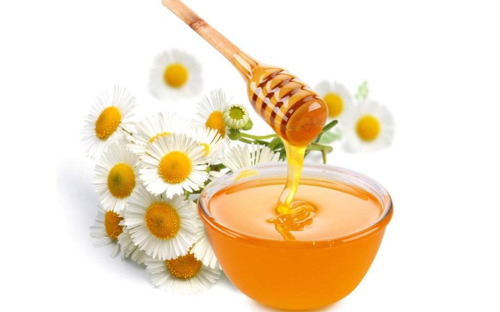 Le fasi del miele apicoltura api for Foto di case mediterranee