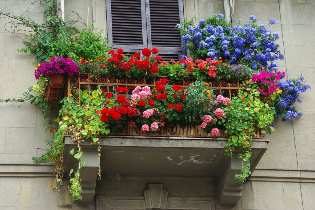 Come arredare il balcone di casa o il terrazzo for Arredare un terrazzo con piante e fiori