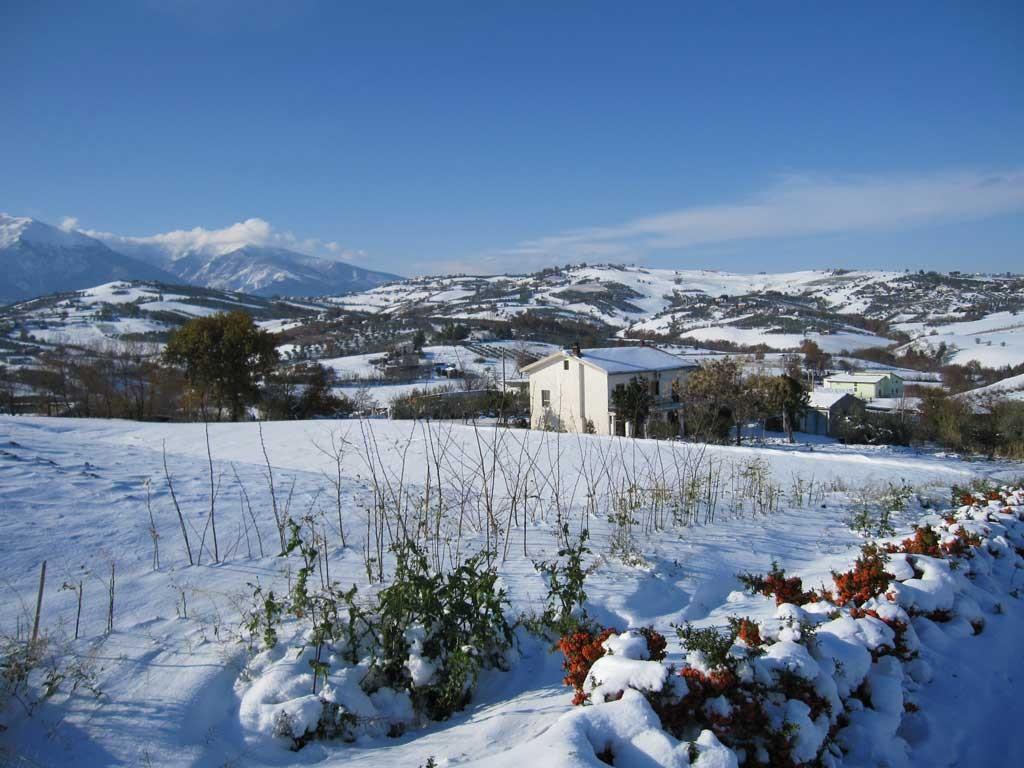 casoli-neve