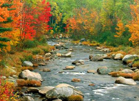 fiume-aventino
