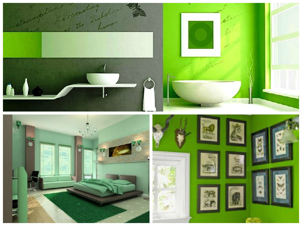 Colorare le pareti di casa con tendenze alla moda for Piccoli piani di casa verdi
