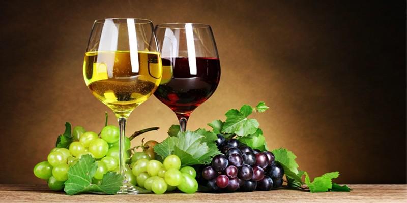 Vino Made in Italy abruzzo