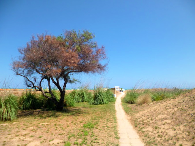 giardino.botanico-mediterraneo