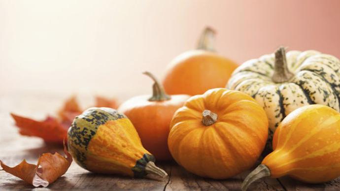 Proprietà e benefici della zucca e dei suoi semi
