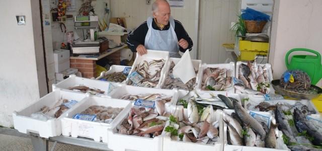 mercato-pesce-termoli