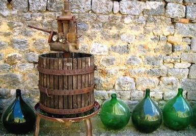vino_torchio