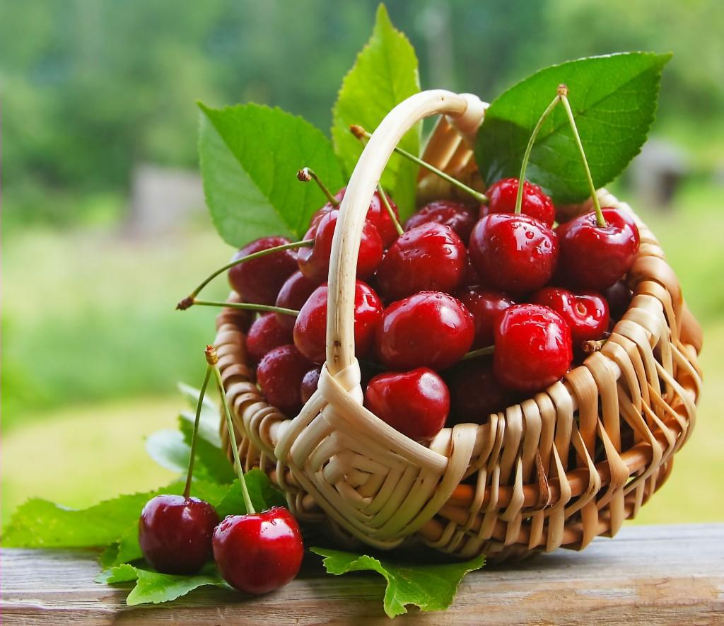 Risultati immagini per cesto di ciliegie