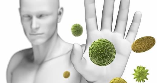 rigenerare-sistema-immunitario-stomaco